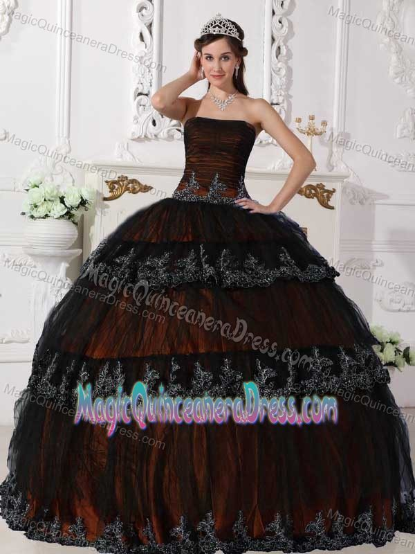 Brown Appliques Quinceanera Dresses in Aguadilla Puerto Rico