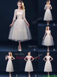 New Arrivals Tea Length Tulle Dama Dress in Champagne