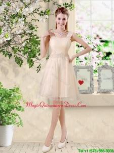 Modern Straps Short Appliques Dama Dresses in Champagne