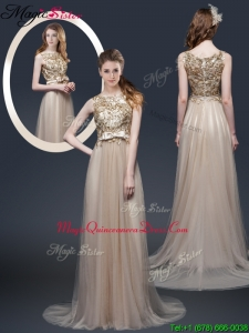 Luxurious Brush Train Dama Dresses with Appliques and Bowknot