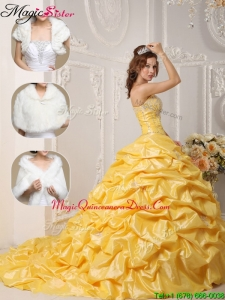 Classical Court Train Quinceanera Gowns with Pick Ups and Appliques