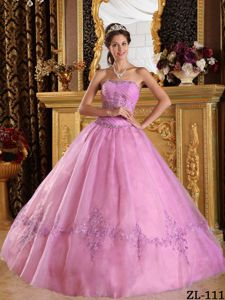 2013 High-class Appliqued Pink Floor-length Quince Dresses Ball Gown