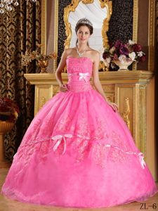 Rose Pink Strapless Floor-length Dresses for Quinceanera with Appliques in Briarcliff
