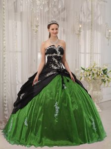 Appliqued Black and Green Sweet Sixteen Dress with Lace Up Back in Bell Canyon
