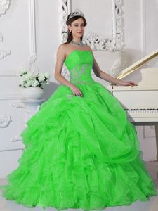 Strapless Princess Dress for Quinceanera in Spring Green with Appliques in Decatur