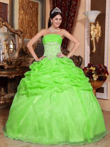 Spring Green Organza Quinceanera Dress with Appliques and Pick-ups in Bend