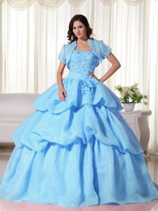 Baby Blue Strapless Organza Hand Flowery Quinceanera Gown Dress in Denton