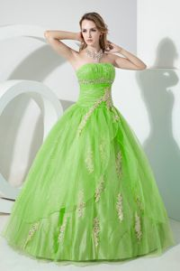 Spring Green Strapless Organza Beaded Quinceanera Dress with Embroidery in Garland