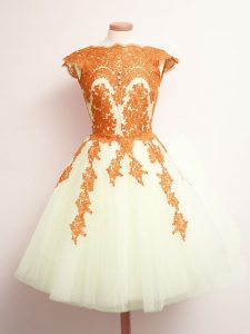 Sleeveless Tulle Mini Length Lace Up Dama Dress in Multi-color with Appliques