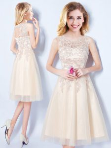 Scoop Champagne Tulle Lace Up Court Dresses for Sweet 16 Sleeveless Knee Length Appliques