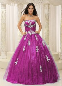 Elegant Strapless Fuchsia Long Quinceanera Gowns with Appliques in Addison