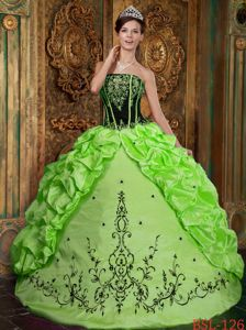 Spring Green Lace-up Long Quinces Dresses with Embroidery and Pick-ups