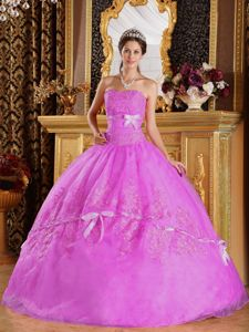 Rose Pink Strapless Floor-length Quinces Dresses with Appliques in Denton