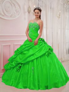 Spring Green Sweetheart Dress for Quinceanera with Pick-ups and Flowers in Brest