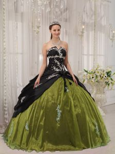 Appliqued Black and Olive Green Sweet Sixteen Dresses with Lace Up in Elkhart