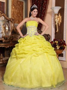 Yellow Strapless Floor-length Organza Sweet 16 Dress with Ruches in Franklin
