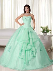 Strapless Floor-length Apple Green Quince Dresses with Embroidery in Gilman