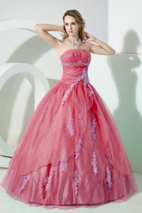 Appliqued Strapless Organza Sweet 16 Dresses in Floor-length in Watermelon