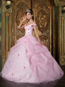Newest Zipper-up Off The Shoulder Pink Quinceanera Dress in Normal AL