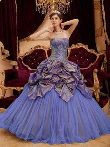 Plus Size Pick-ups Appliqued Multi-color Quinceanera Gown for Wholesale