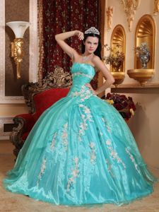 Strapless Organza Quinceanera Gown Dresses with Appliques in Dallas