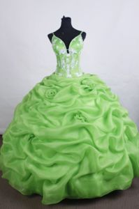 Appliques Pick-ups Straps Green Quinceanera Dresses in Maicao Colombia