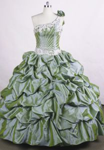 Flowers One Shoulder Dresses For Quinceanera in Lugano Switzerland