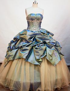 Ruched Strapless Appliques Pick Up Lausanne Switzerland Quince Gown