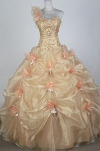 One Shoulder Pick Ups Champagne Elgg Switzerland Quinceanera Dress