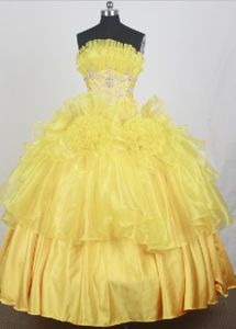 Yellow Strapless Appliques with hand-made flowers Quinceanera Gown in Carrollton