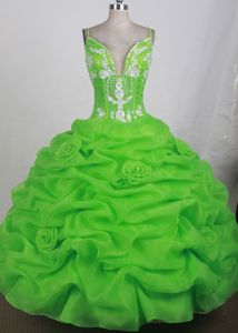 Spaghetti Straps Pick-ups Spring Green Sweet 16 Quince Dresses Online