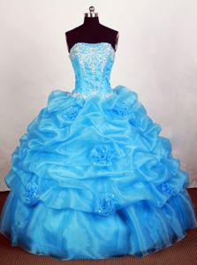 Perfect Pick-ups Appliqued Aqua Blue Sweet 16 Dresses with Flowers