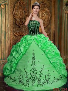 Black and Green Pick and Embroidery Decorated Sweet 15 Dresses in Salem
