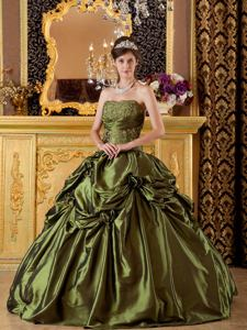 Olive Green Sweet 16 Dresses with Flower and Embroidery in Fairmont WV