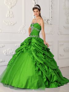 Embroidery Ruching and Pick Ups Green Quinceanera Gowns in Parkersburg