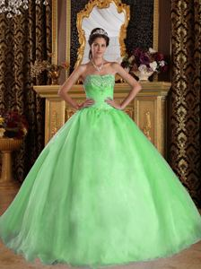 Lovely Princess Spring Green Sweetheart Beaded Organza Quinceanera Dresses