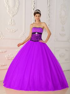 Fuchsia Strapless Zebra Beading Princess Quinceanera Dress in Georgetown