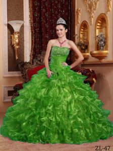 Ball Gown Organza Beaded Strapless Green Quinceanera Dress 2013 Hot Sale