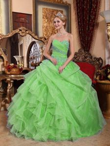 Lovely Spring Green Sweetheart Appliques and Ruching Quinceanera Ball Gown
