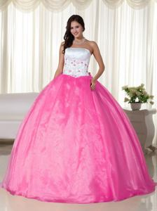 2014 Hot Pink Ball Gown Strapless Floor-length Organza Quinceanera Dress