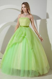 Spring Green Princess Strapless Organza Ruching Quinceanera Dress in Wellesley