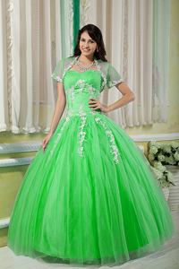 Spring Green Sweetheart Tulle Appliques Quinceanera Dress in Southborough