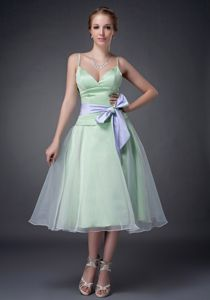 Cute Apple Green Tea-length Dama Dress with Straps and Bowknot in Erie