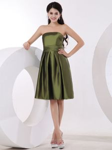 Low Price Strapless Olive Green Knee-length Party Dama Dress in Plymouth