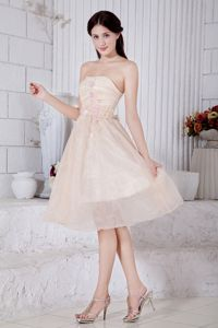 Strapless Knee-length Party Dama Dresses in Organza with Appliques in Pullman