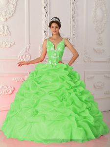Spring Green Straps Floor-length Quince Dress with Appliques in Crandon