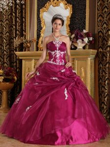 Appliqued Wine Red Strapless Quinceanera Dresses with Lace Up in Custer