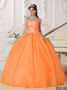 Orange Strapless Floor-length Sweet Sixteen Dress with Appliques in Dane