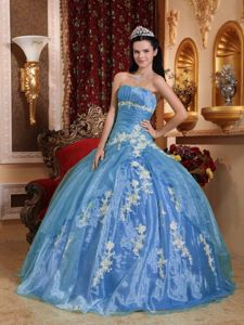 Strapless Floor-length Blue Sweet 15 Dresses with Appliques in Cragford