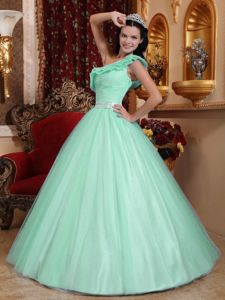 Apple Green A-line One Shoulder Tulle Ruching Sweet Sixteen Quince Dress